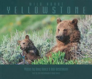 "cover image of book ""Wild About Yellowstone"" by Doug Dance"