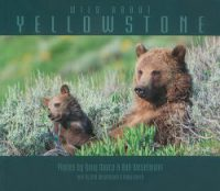 "cover image of book ""Wild About Yellowstone"""