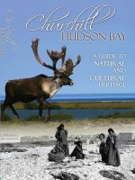 "cover image of book ""Churchill/Hudson Bay - A Guide"" by Lorraine E. Brandson"