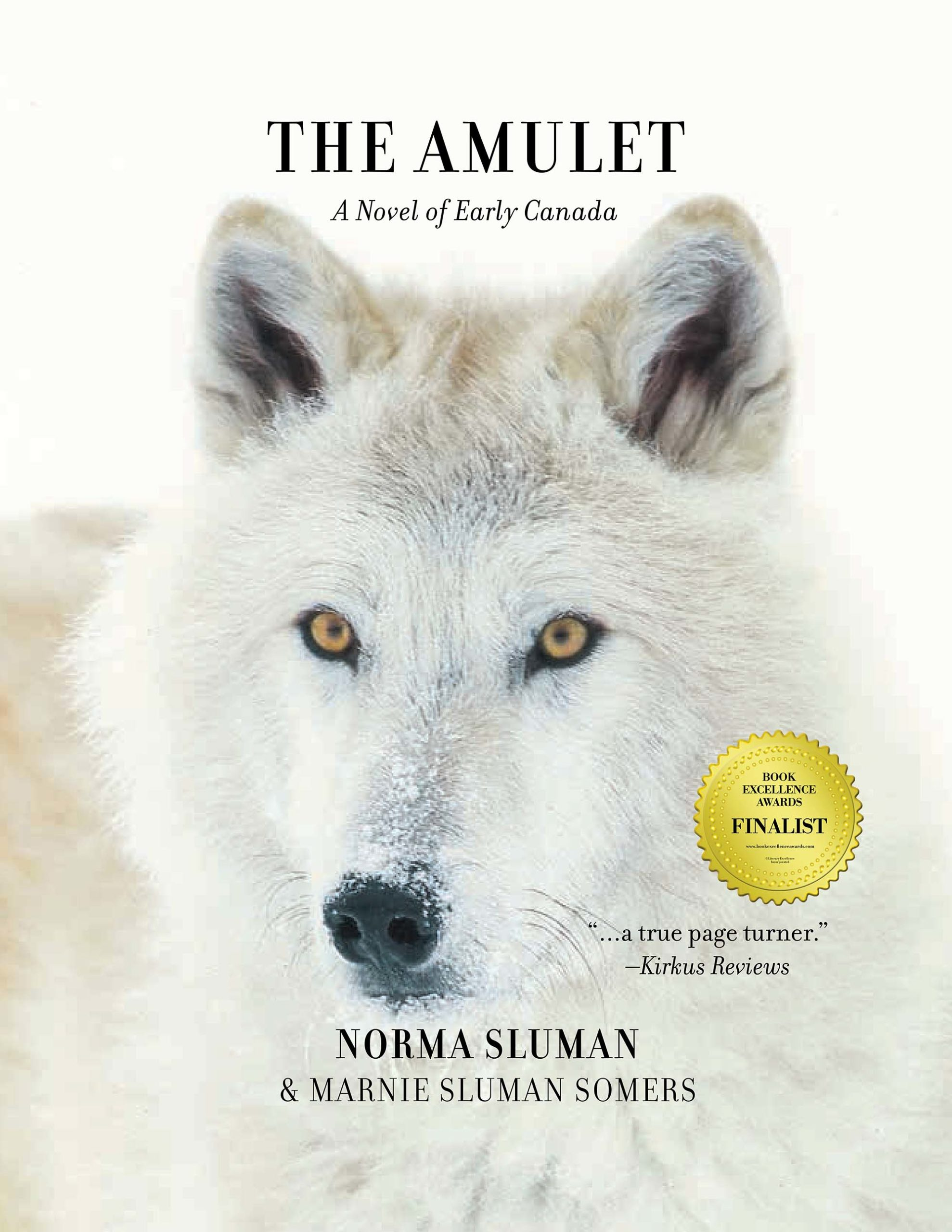 The Amulet book cover