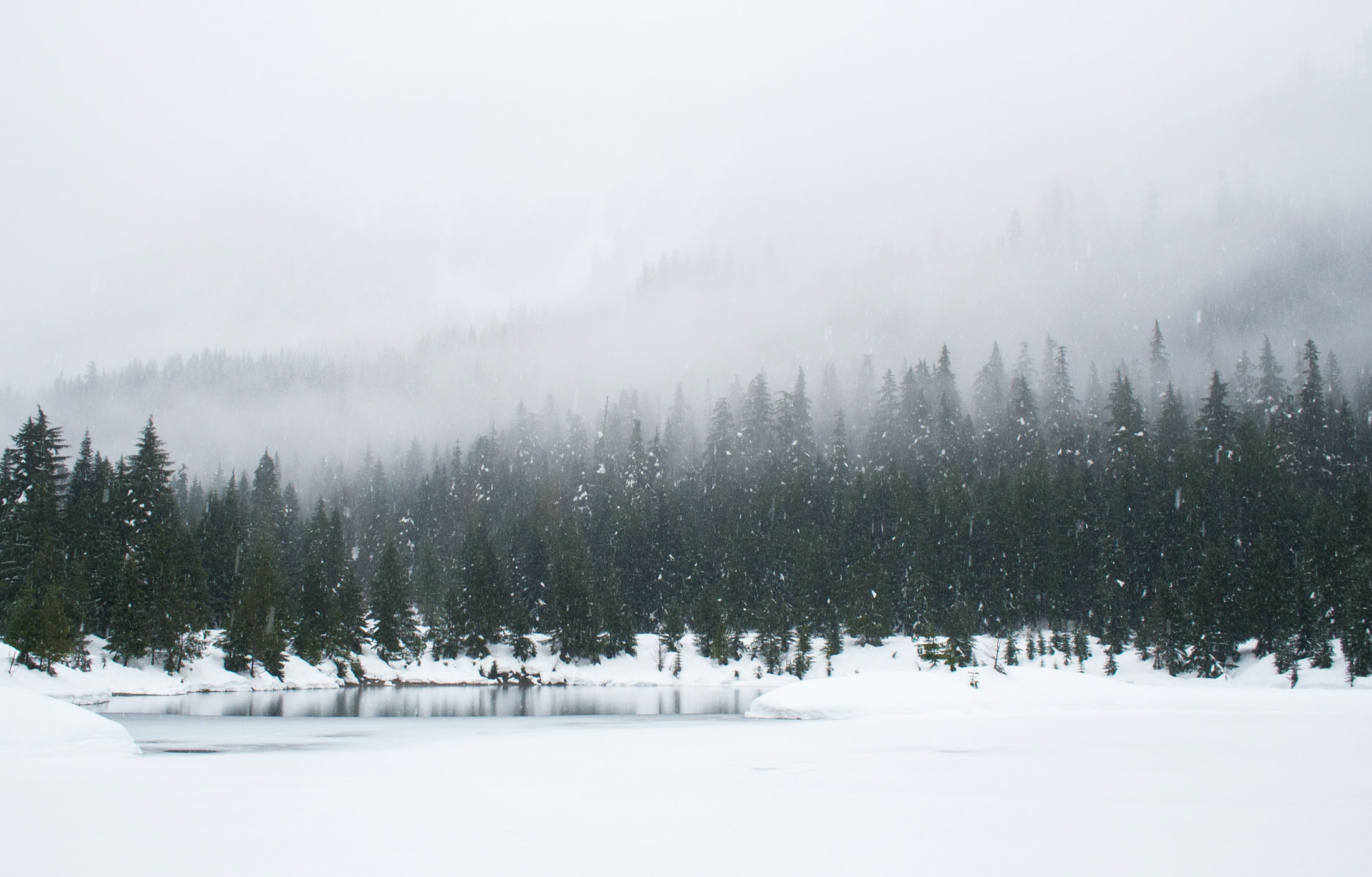 scene of a frozen lake surrounded by snow and pine trees