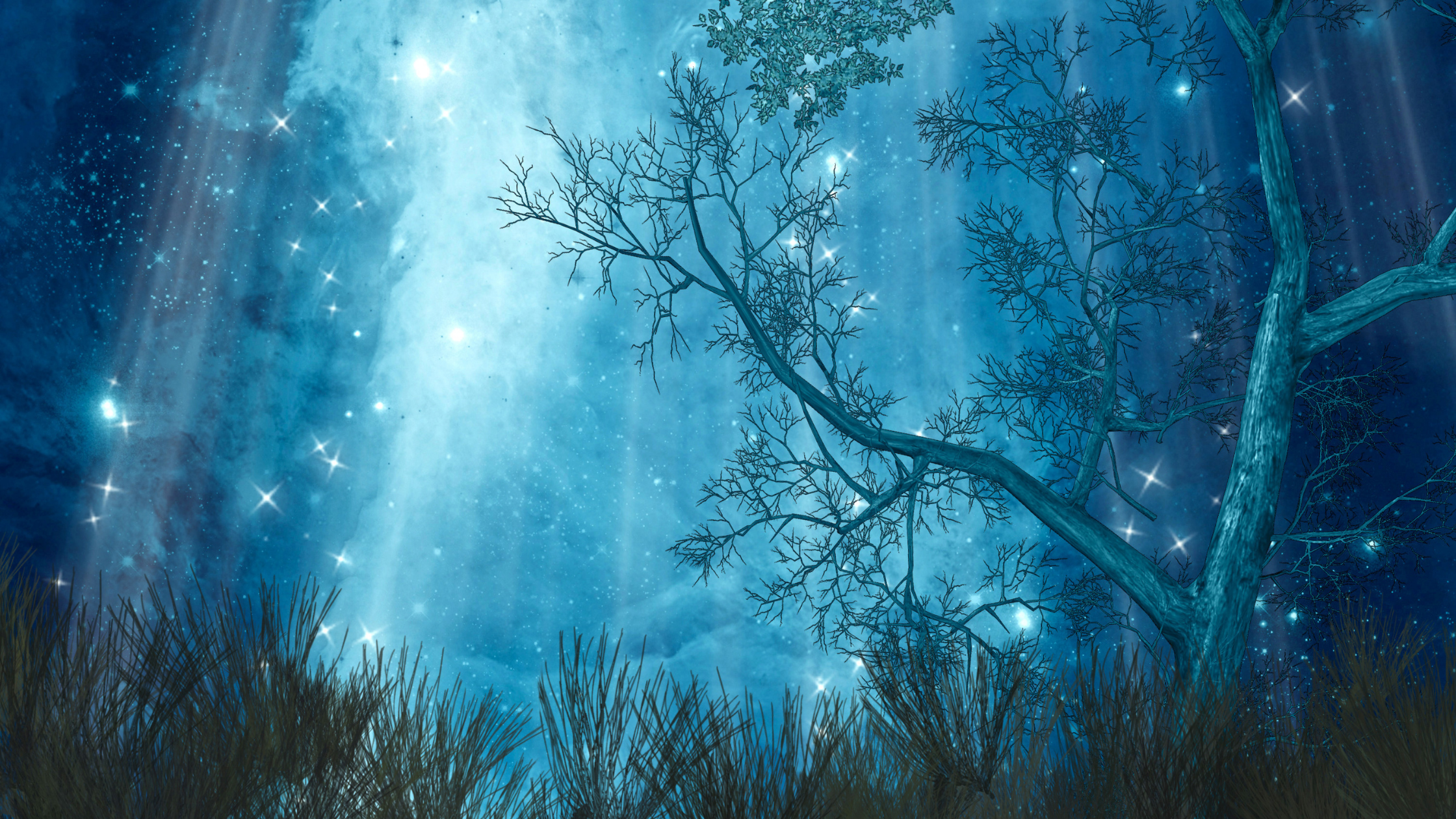 a tree with thin branches is silhouetted against a moonlit sky with sparkling stars